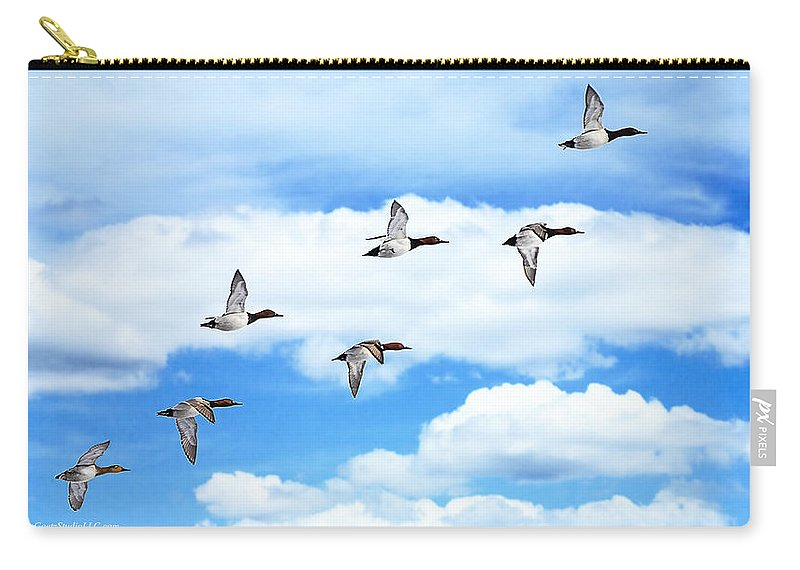 Canvasback Carry-all Pouch featuring the photograph Canvasback Ducks In Flight by LeeAnn McLaneGoetz McLaneGoetzStudioLLCcom