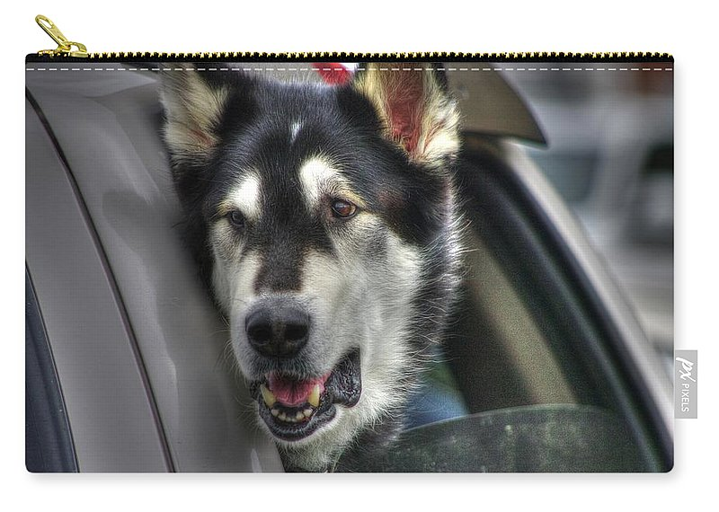 Dogs Carry-all Pouch featuring the photograph Car Ride by Dennis Baswell
