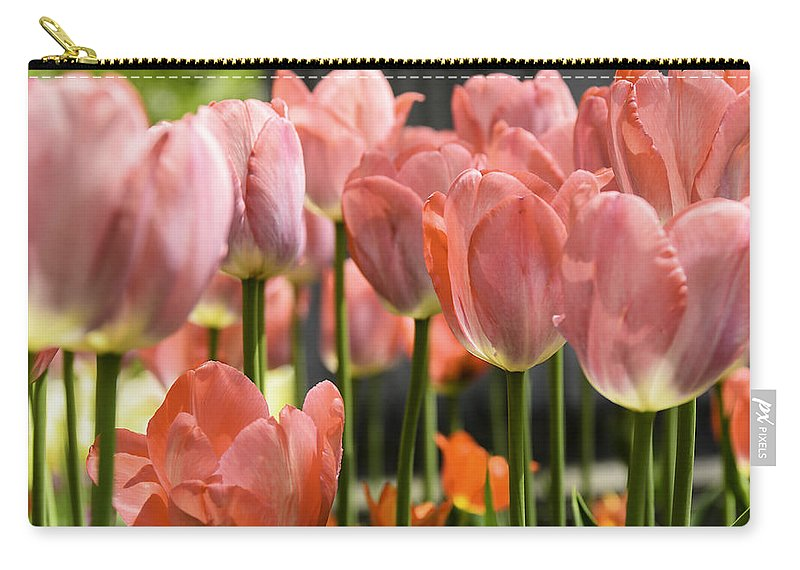 Usa Carry-all Pouch featuring the photograph Caring Pink Tulip Time by LeeAnn McLaneGoetz McLaneGoetzStudioLLCcom