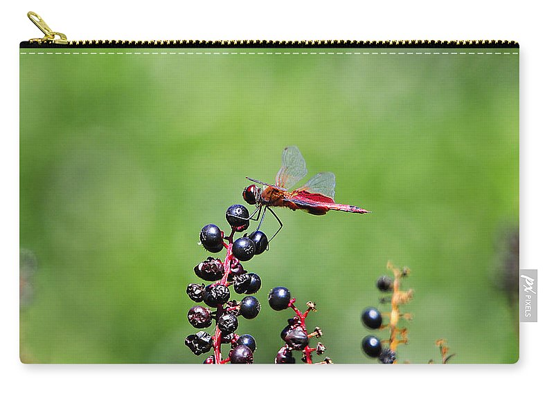 Dragonfly Carry-all Pouch featuring the photograph Carolina Saddlebags by Al Powell Photography USA