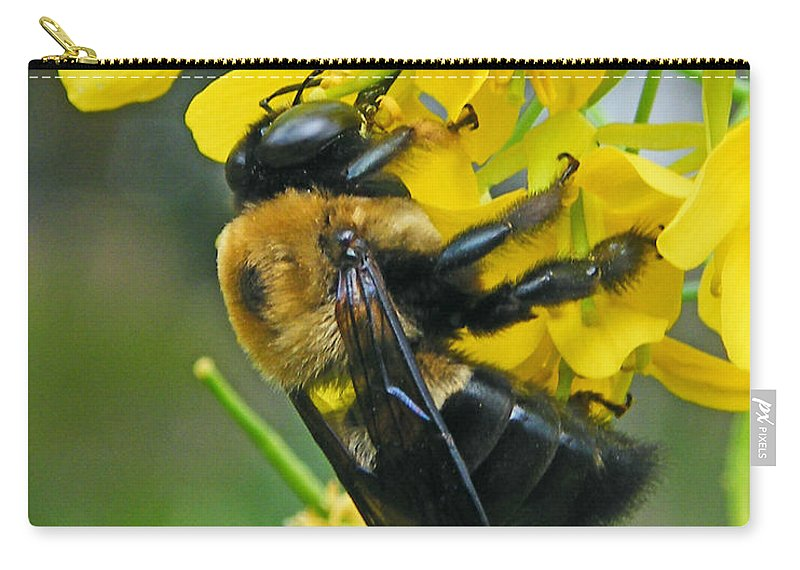 Bee Carry-all Pouch featuring the photograph Carpenter Bee by Lizi Beard-Ward