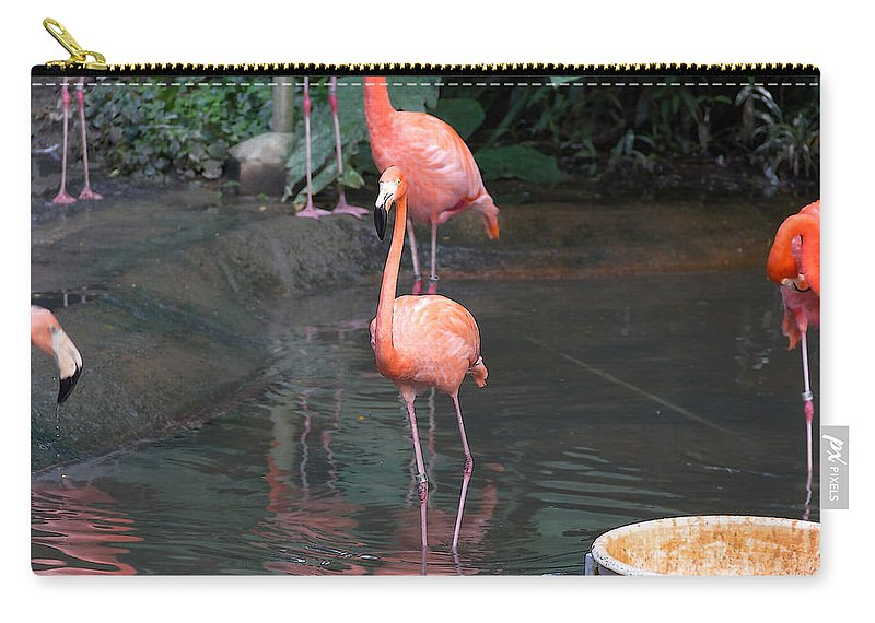Asia Carry-all Pouch featuring the digital art Cartoon - A Flamingo In The Small Lake In Their Exhibit In The Jurong Bird Park by Ashish Agarwal