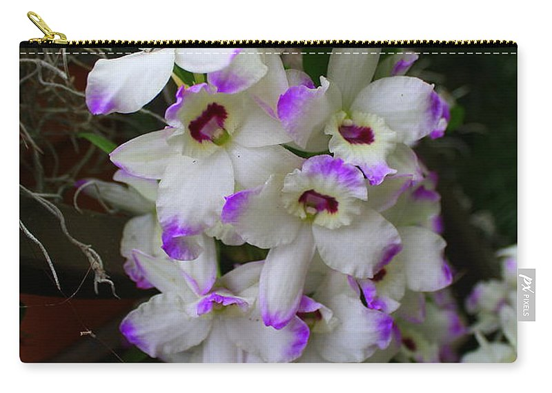Orchid Carry-all Pouch featuring the photograph Cascade Of Orchids In White And Purple by Dora Sofia Caputo Photographic Design and Fine Art