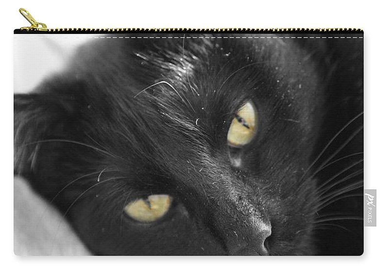 Caspian Carry-all Pouch featuring the photograph Caspian by Amanda Barcon