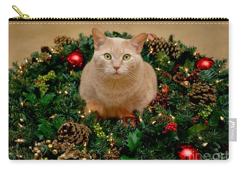 Animal Portrait Carry-all Pouch featuring the photograph Cat And Christmas Wreath by Amy Cicconi