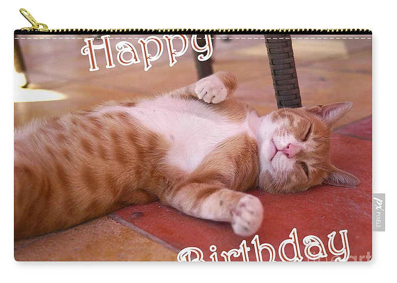 Cat Carry-all Pouch featuring the photograph Cat Birthday Card by John Chatterley