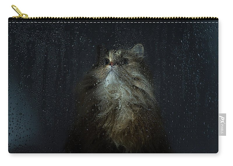 Pets Carry-all Pouch featuring the photograph Cat By Rainy Window by Benjamin Torode