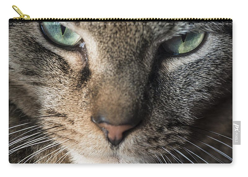 Animal Carry-all Pouch featuring the photograph Cat Eyes by John Greim