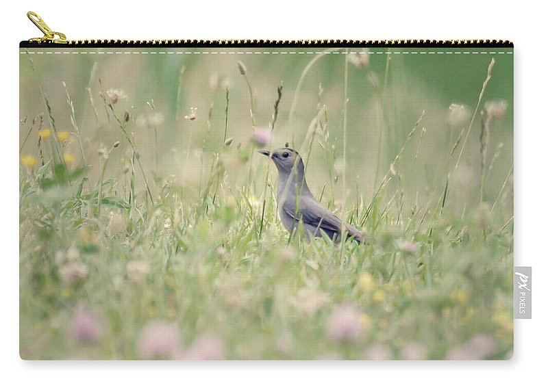 Catbird Carry-all Pouch featuring the photograph Catbird In The Wildflowers by Kerri Farley
