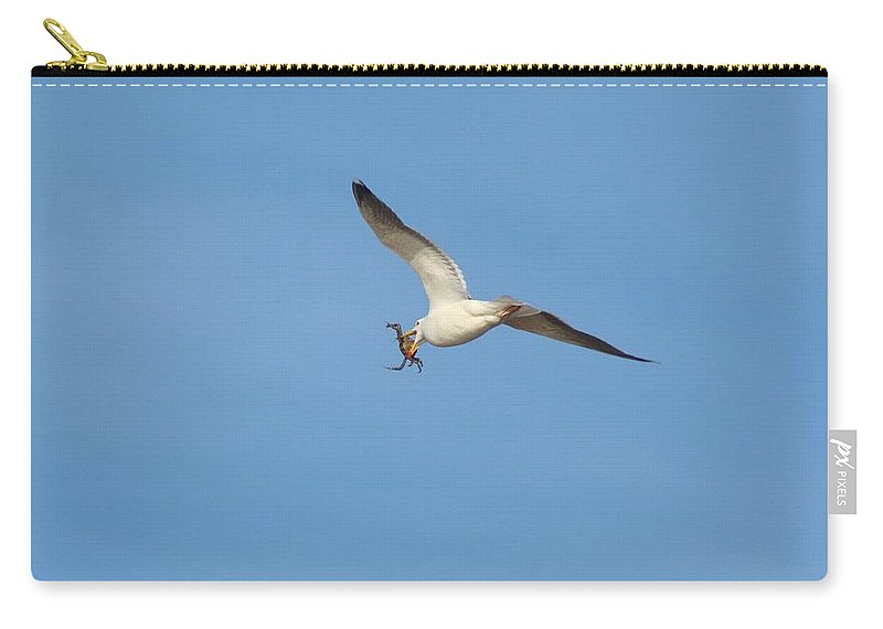 Karen Silvestri Carry-all Pouch featuring the photograph Catch Of The Day by Karen Silvestri