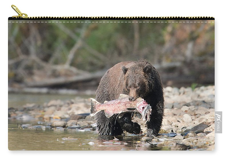 Grizzly Bear Carry-all Pouch featuring the photograph Catch Of The Day by Shannon Carson