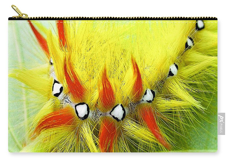 Insect Carry-all Pouch featuring the photograph Caterpillar 2 by Ingrid Smith-Johnsen
