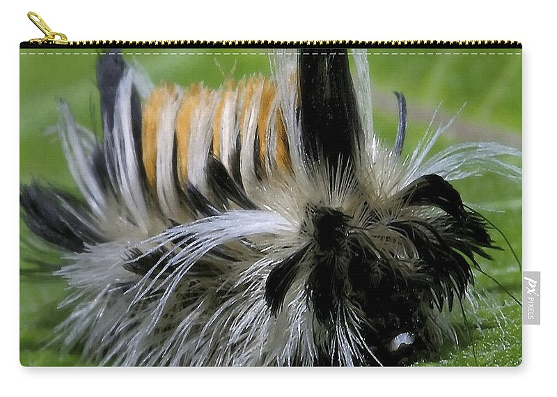 Caterpillar Carry-all Pouch featuring the photograph Caterpillar 22 by Ingrid Smith-Johnsen