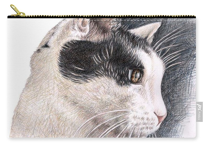 Cat Carry-all Pouch featuring the drawing Cats View by Nicole Zeug