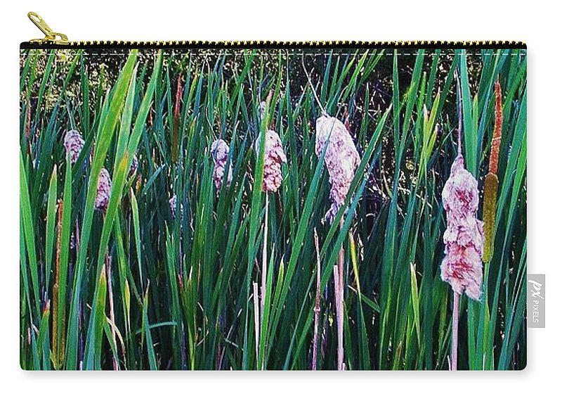 Cattails Carry-all Pouch featuring the photograph Cattails by Daniel Thompson