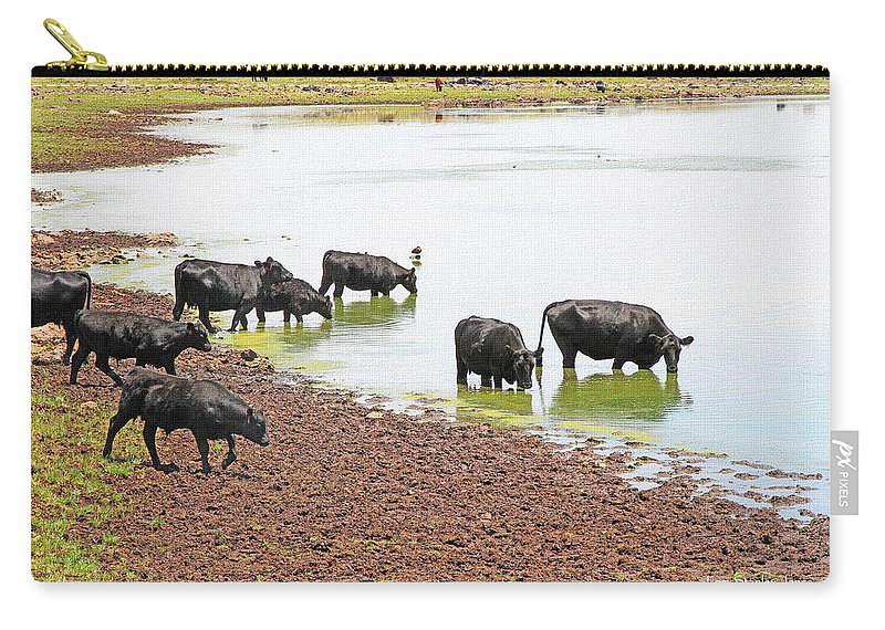 Cattle At Big Lake Arizona Carry-all Pouch featuring the photograph Cattle At Big Lake Arizona by Tom Janca