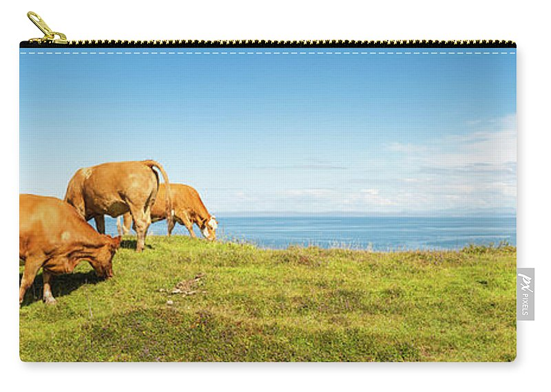 Water's Edge Carry-all Pouch featuring the photograph Cattle Grazing In Picturesque Meadow by Fotovoyager