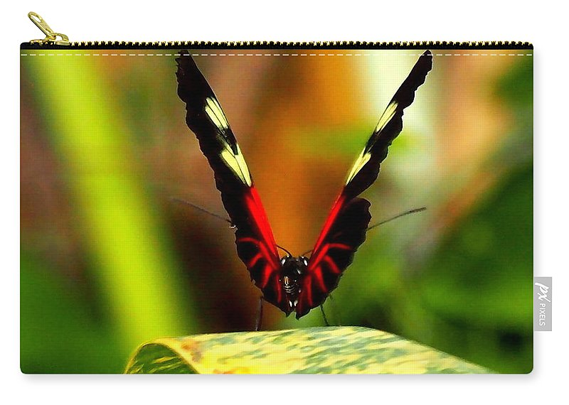 Nature Carry-all Pouch featuring the photograph Cattleheart Butterfly by Amy McDaniel
