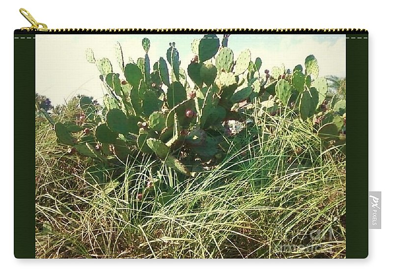 Catus Carry-all Pouch featuring the photograph Catus 1 by Michelle Powell