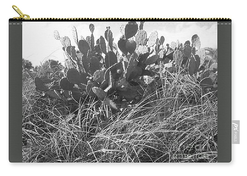 Catus Carry-all Pouch featuring the photograph Catus 2 by Michelle Powell