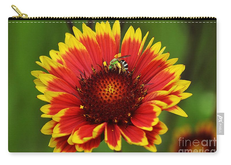 Bee Carry-all Pouch featuring the photograph Caught Snacking by Kevin Fortier