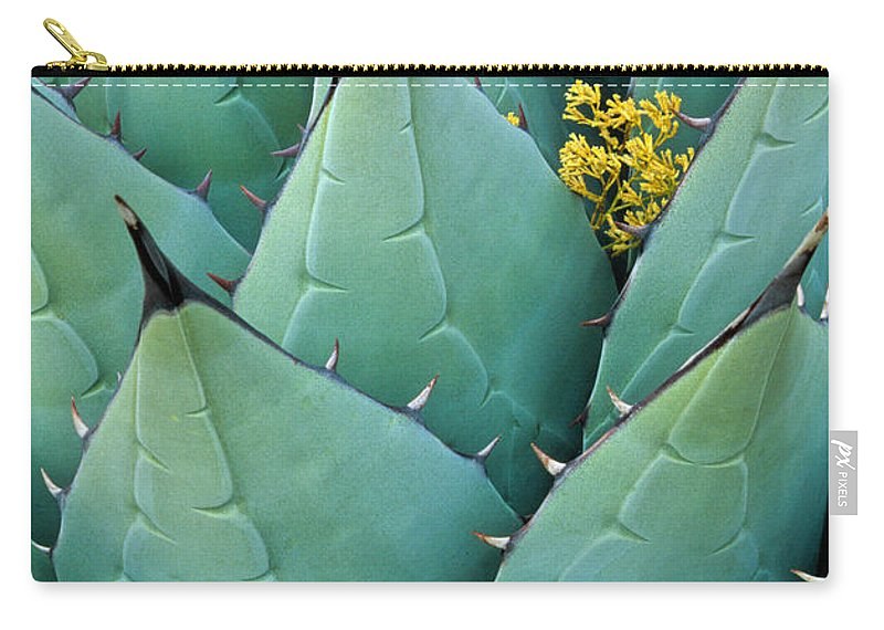 Agave Americana Carry-all Pouch featuring the photograph Century Plant And Tiny Blossom by Inge Johnsson