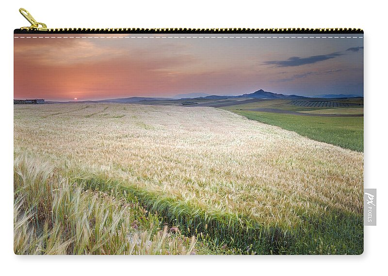 Plants Carry-all Pouch featuring the photograph Cereal Fields by Guido Montanes Castillo
