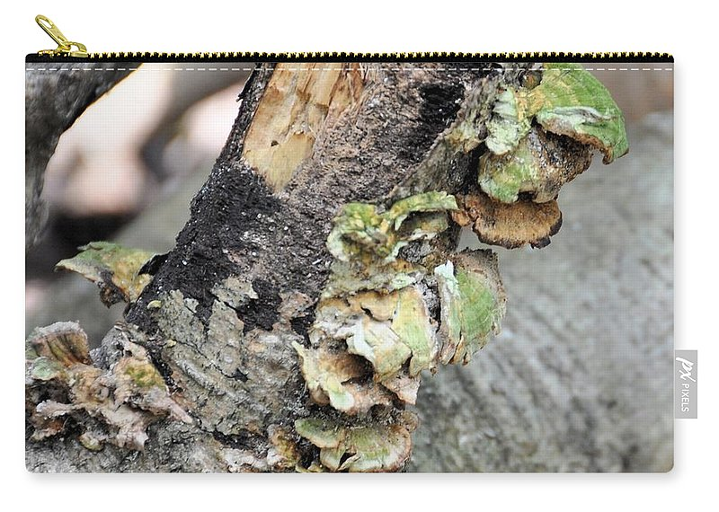 Violet-toothed Polypore Carry-all Pouch featuring the photograph Violet-toothed Polypore by Valerie Kirkwood