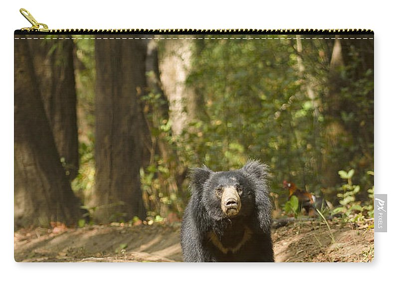 Sloth Carry-all Pouch featuring the photograph Chance Encounter With The Hairy One by Fotosas Photography