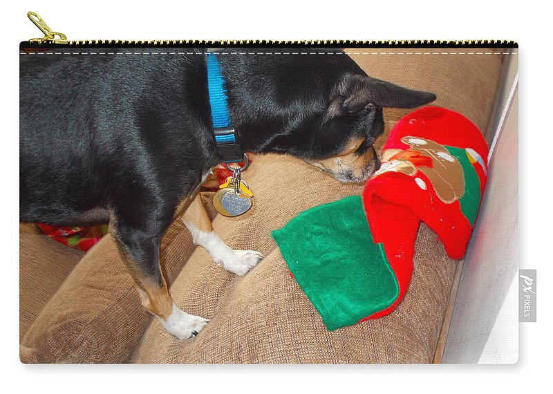 Carry-all Pouch featuring the photograph Looking For His Gifts by Chris W Photography AKA Christian Wilson