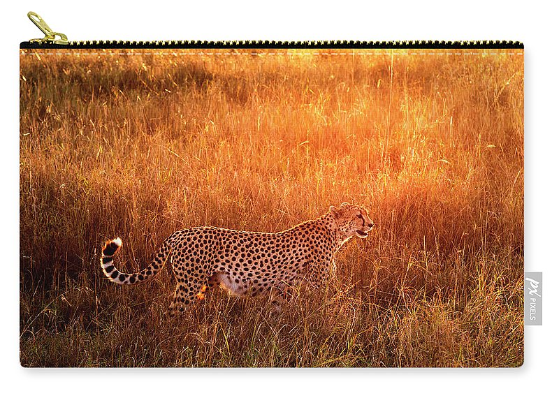 Scenics Carry-all Pouch featuring the photograph Cheetah In The Grass At Sunrise by Mike Hill
