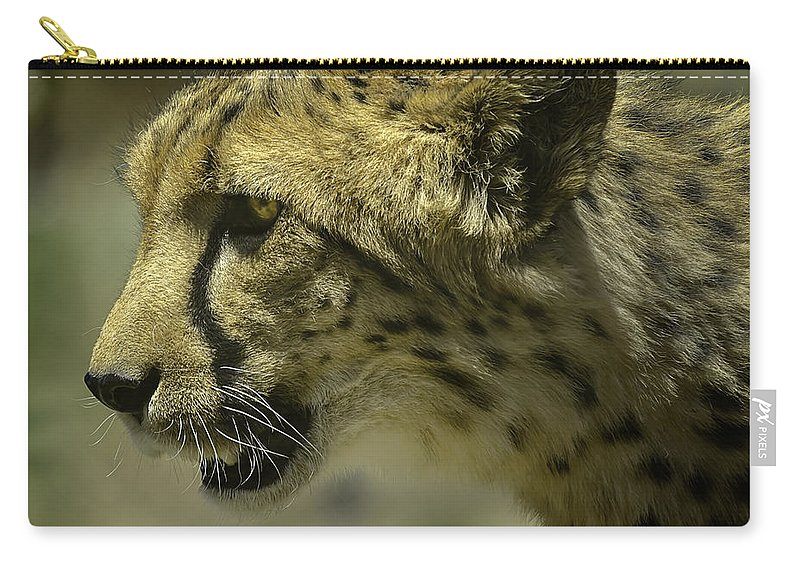 Cheetah Carry-all Pouch featuring the photograph Cheetah On The Prowl by LeeAnn McLaneGoetz McLaneGoetzStudioLLCcom