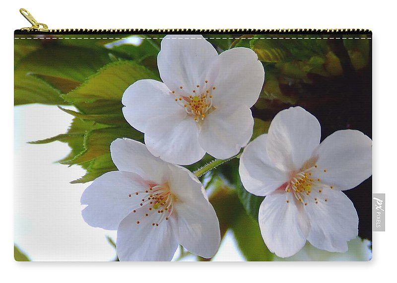 Cherry Carry-all Pouch featuring the photograph Cherry Blossom 2 by Andrea Anderegg