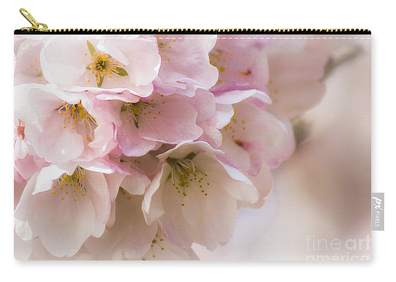 Cherry Carry-all Pouch featuring the photograph Cherry Blossom Time by Patricia Babbitt