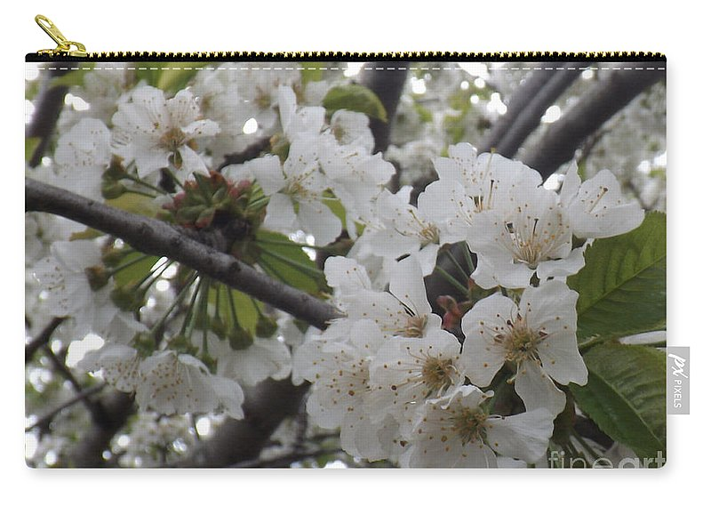 Cherry Carry-all Pouch featuring the photograph Cherry Blossoms Branching Out by Brenda Brown