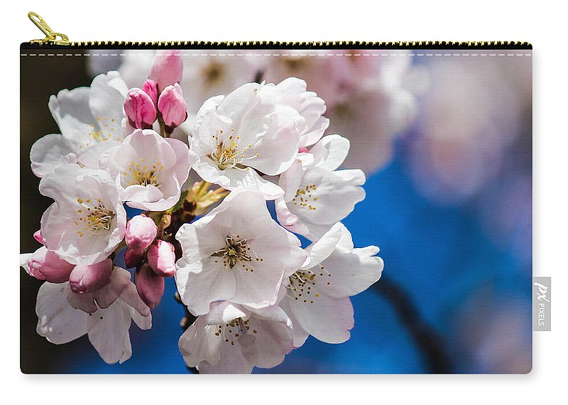 Cherry Blossoms Carry-all Pouch featuring the photograph Cherry Blossoms by Patricia Babbitt