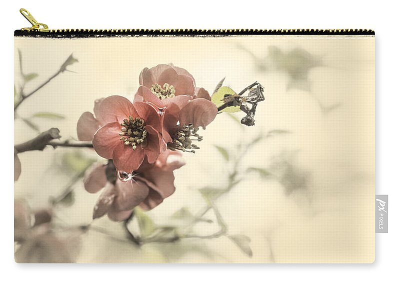 Cherry Blossom Carry-all Pouch featuring the photograph Cherry Blossoms by Peter v Quenter