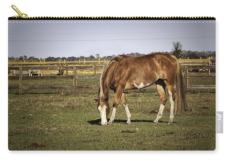 Horse Carry-all Pouch featuring the photograph Chestnut In The Pasture by Fran Gallogly
