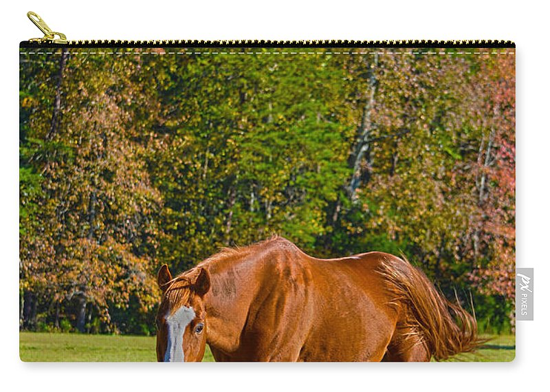 Horse Carry-all Pouch featuring the photograph Chestnut Red Horse by Sandi OReilly