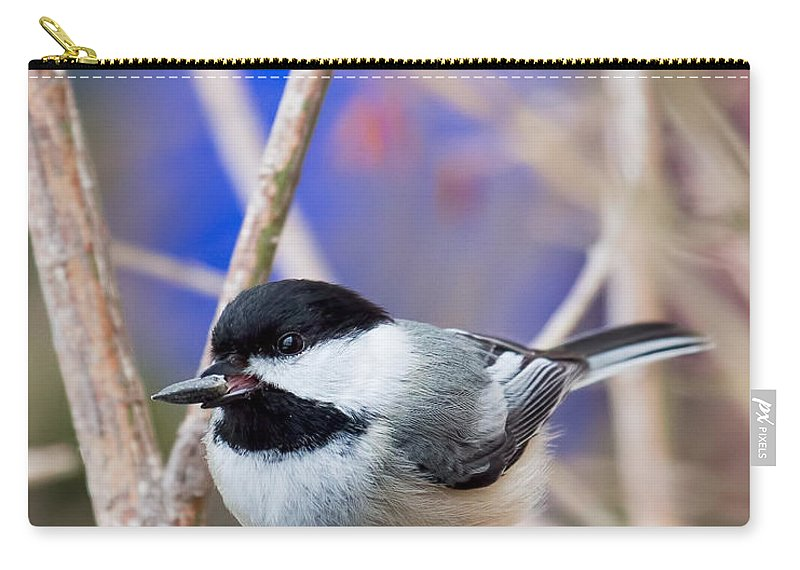 Chickadee Carry-all Pouch featuring the photograph Chickadee Feast by Barbara McMahon