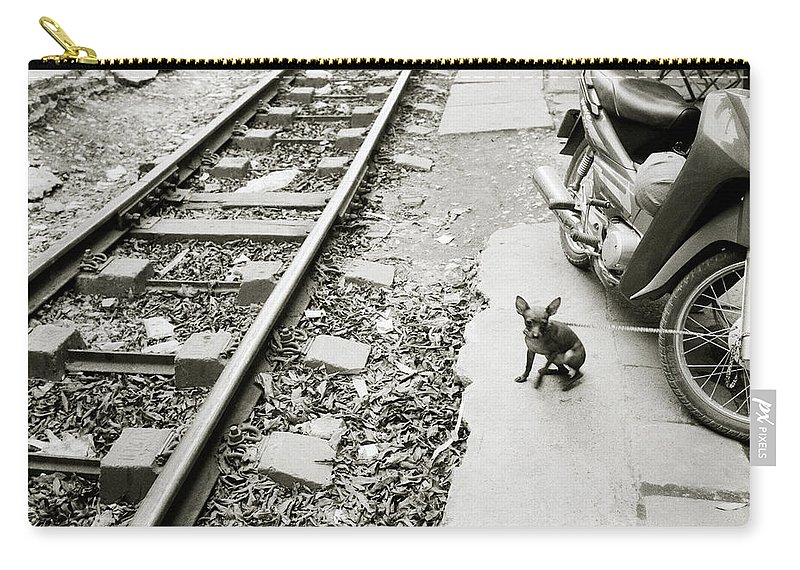 Asia Carry-all Pouch featuring the photograph Chihuahua In Hanoi by Shaun Higson