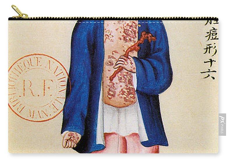 Alternative Carry-all Pouch featuring the painting China Smallpox by Granger
