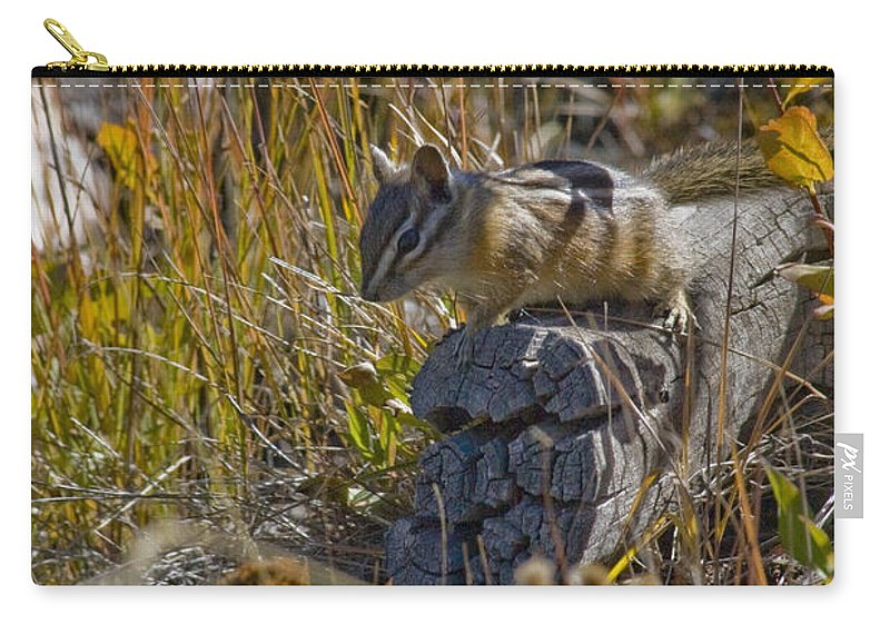 Chipmunk Carry-all Pouch featuring the photograph Chipmunk In Yellowstone by Crystal Heitzman Renskers