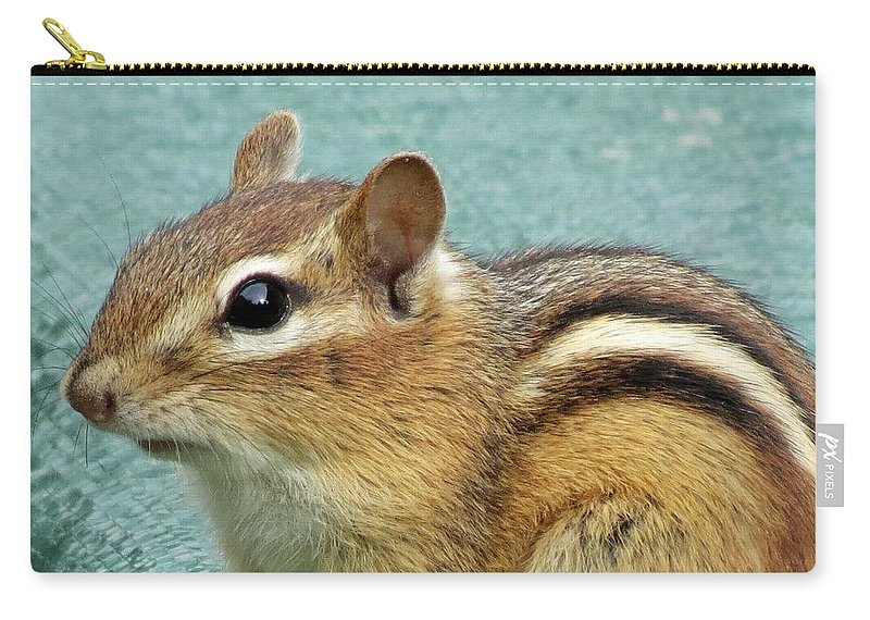 Chipmunk Carry-all Pouch featuring the photograph Chipmunk Portrait by MTBobbins Photography