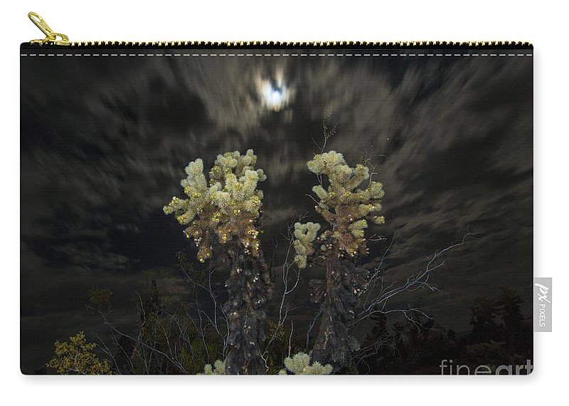 Cholla Cactus Carry-all Pouch featuring the photograph Cholla Light - Joshua Tree National Park by Jamie Pham