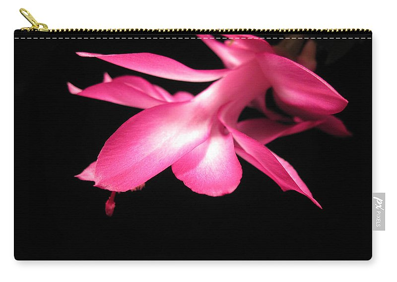 Christmas Cactus Carry-all Pouch featuring the photograph Christmas Cactus 5 by Mary Bedy