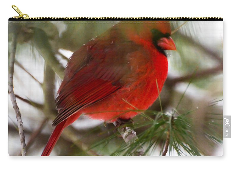 Christmas Cardinal Carry-all Pouch featuring the photograph Christmas Cardinal by Kerri Farley