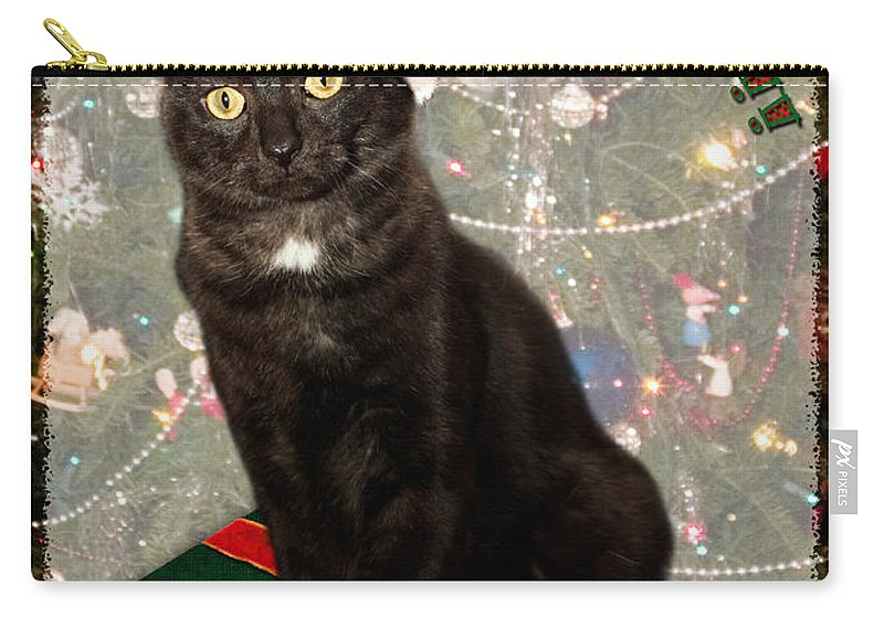 3scape Carry-all Pouch featuring the photograph Christmas Cat by Adam Romanowicz