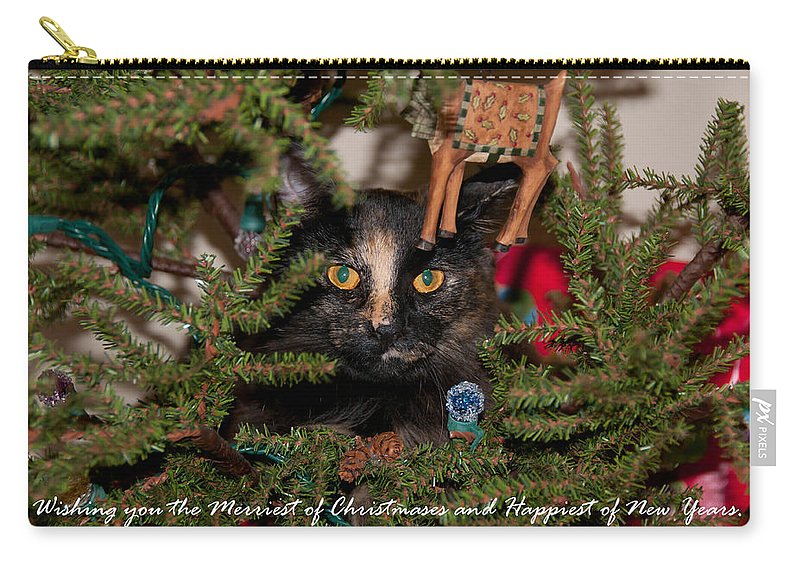 Cats Carry-all Pouch featuring the photograph Christmas Cat by Guy Whiteley