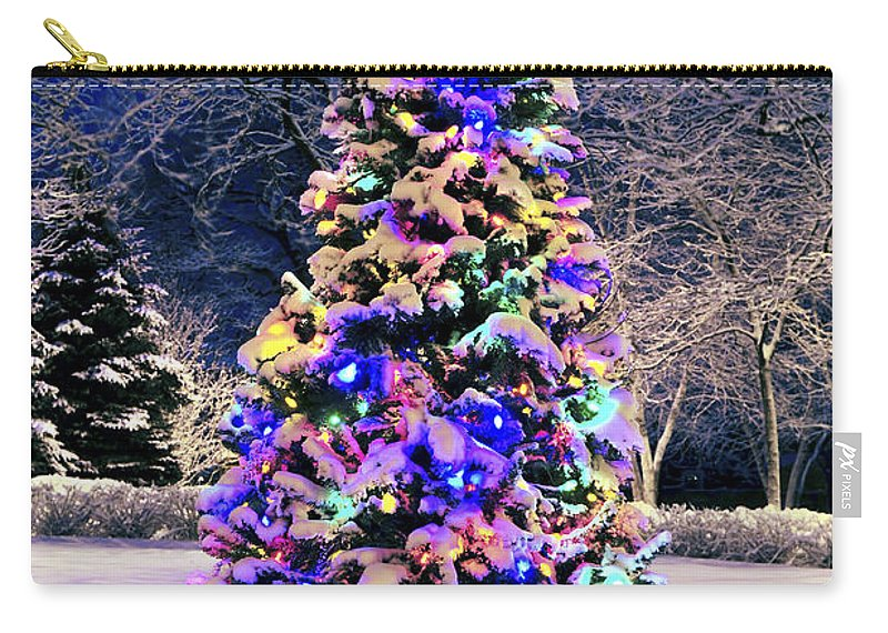 Christmas Carry-all Pouch featuring the photograph Christmas Tree In Snow by Elena Elisseeva